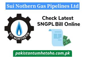 SNGPL Online Bill Check